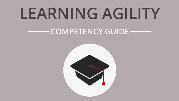 Learning Agility competency guide